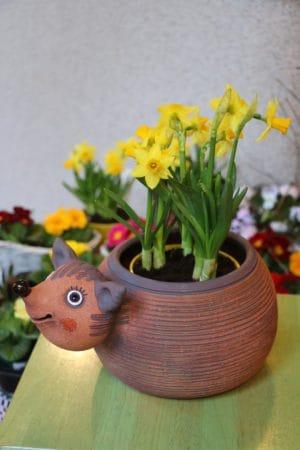Ježek – květináč, výška 18 cm